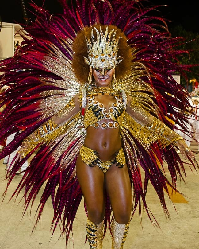 Lion Theme Gold and Red Crystal Carnival Costume