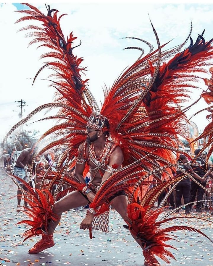 Red Feather and Rhinestone Samba Costume for Men.