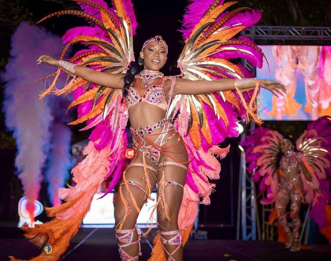 Pink Rhinestones Samba Two Piece Bikini Wear with Feather Accessories.