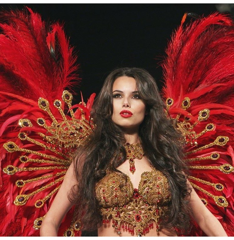 Gold and Red Rhinestones Bikini Corset and Red Feather Backpiece for Carnival and Samba
