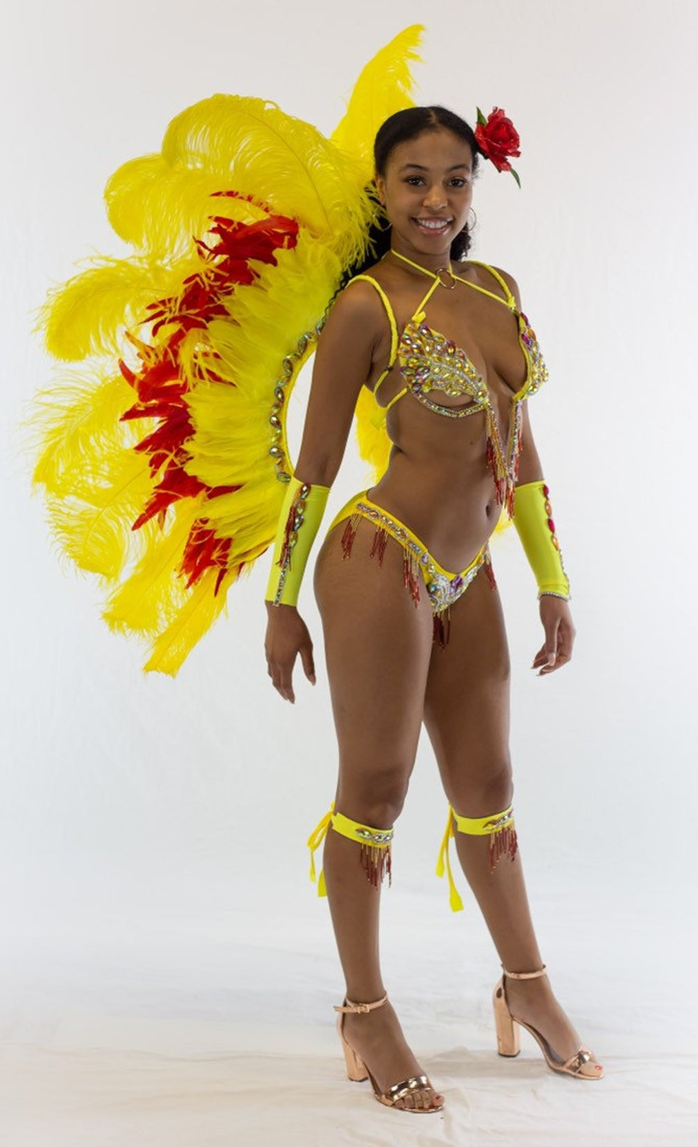 Bling carnival costumes Beautiful Hand Made Samba / Carnival Costume with Feathered Backpack, Samba Sleeves and Embellished Bra and Pantie