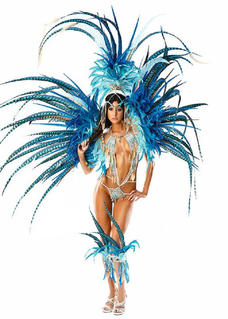 Bling carnival costumes Glittering Bikini 1 Piece Wear with Handmade Wig and Carnival Costume Back Piece